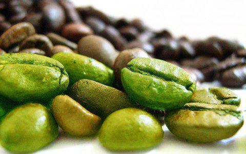 L'impiego della Coffea Canephora nel Controllo del Peso